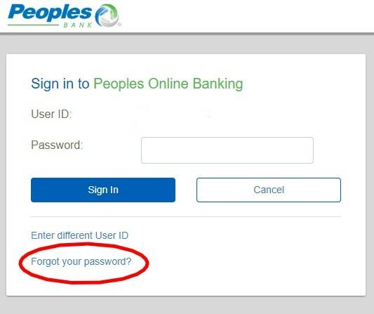 reset password graphic